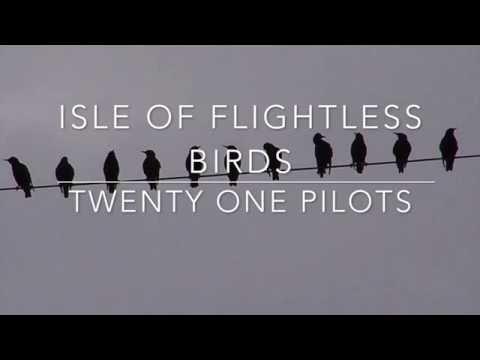 isle of flightless birds - twenty one pilots // lyrics