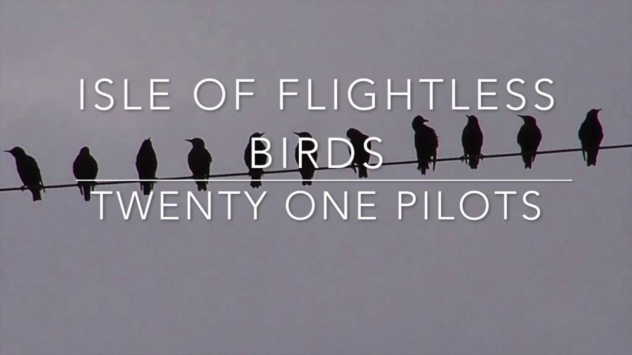 Twenty One Pilots Lyrics Isle Of Flightless Birds  Twenty One Pilots  Lyrics  Youtube