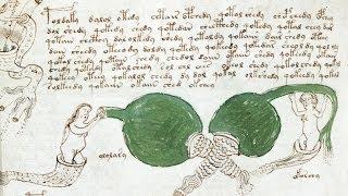 Doku - Das Voynich Rätsel