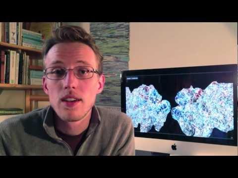 Semantic Representation in the Human Brain