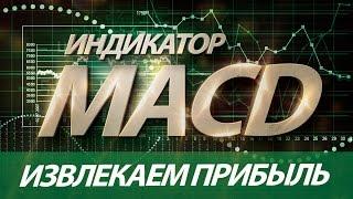 Индикатор MACD - Извлекаем Прибыль