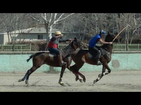 World's first polo sport in Iran