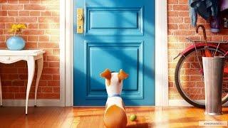 Тайная жизнь домашних животных. Русский трейлер (дублированный)