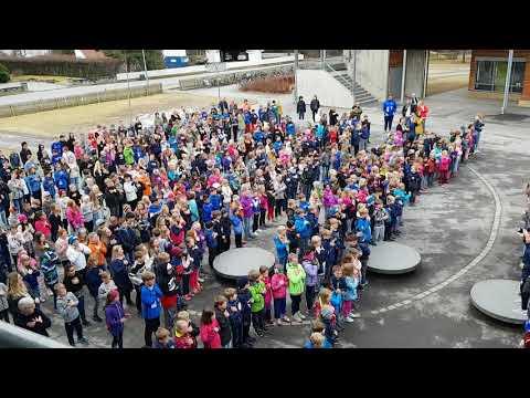 Ringsaker - Fagerlund skole.mp4
