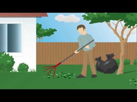 Learn How To Prevent Roaches & Ants From Getting In Your Home