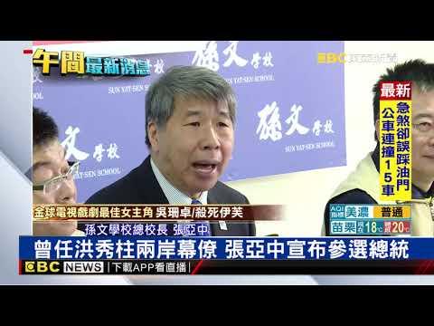 曾任洪秀柱兩岸幕僚 張亞中宣布參選總統