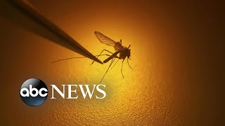 New warning about rare mosquito-borne illness that has killed 1