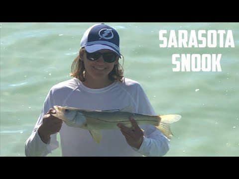 Winter Beach Fishing On Siesta Key, Sarasota