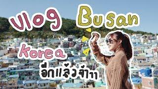 พาไปเที่ยวปูซาน เกาหลี!! ดูคอนเสริต์ใหญ่ครั้งแรก