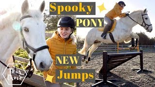 new-show-jumps-and-a-spooky-pony-this-esme
