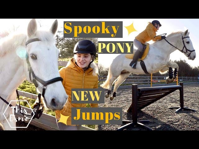 New Show Jumps and a Spooky Pony! | This Esme
