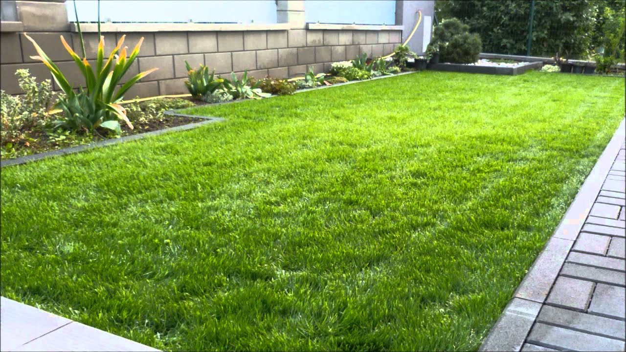 Grass planting youtube for Planting plans with grasses