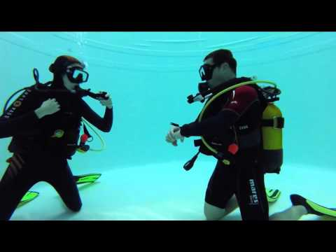 Open Water Diver - Cours PADI N2 - Rennes