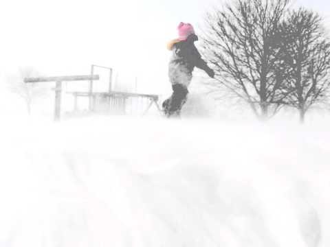 Morris Illinois Blizzard of 2011