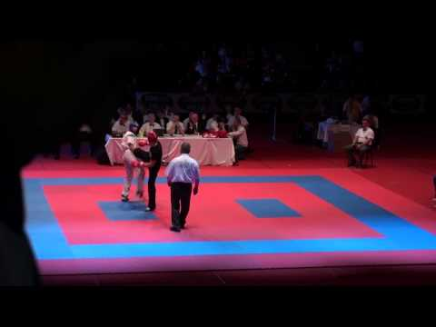 WAKO Kickboxing - EC 2012 - LC -74kg FINALS - Kadr(UKR) Vs. Ando(HUN)