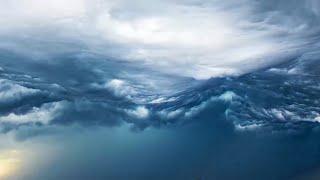 Undulatus asperatus - Time lapse