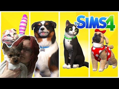 NEWS: Is it on market??? | The Sims 4 Cats and Dogs Overview