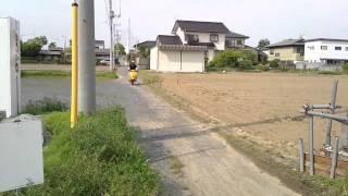【MOTOR RUSH】ベスパ50S