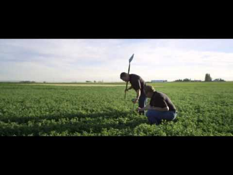 Sustainable Farming Practices Through Nutricert | Amway