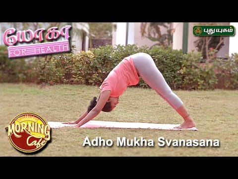 adho mukha svanasana downward facing dog pose   யோகா