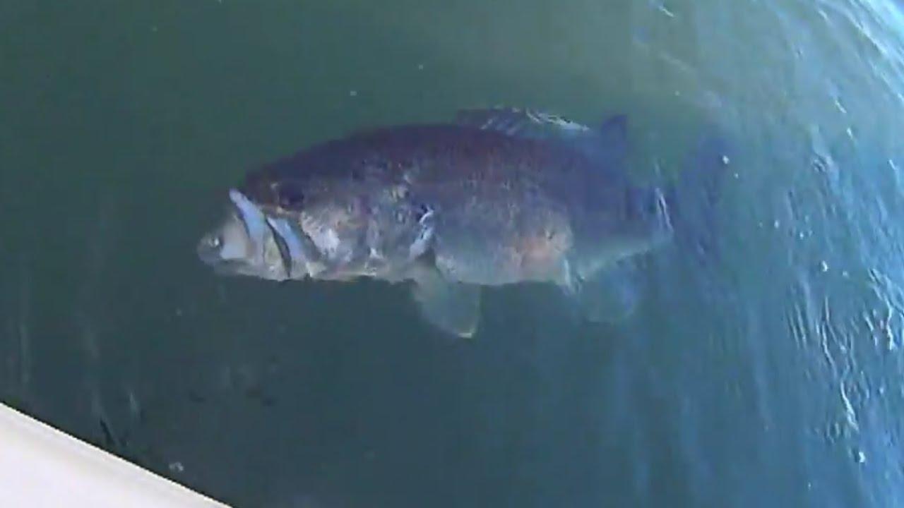 Kayak fishing for big winter bass 2015 youtube for Bass fishing in winter