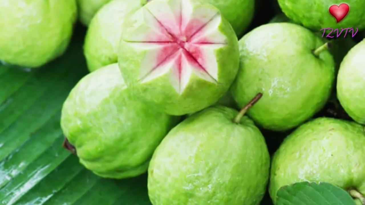 Giảm Cân Chỉ Ăn 1 Quả Ổi 1 Ngày Trong 3 Ngày Liên Tục Kết Quả Sẽ Khiến Bạn Bị Sốc