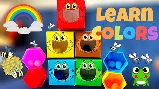 Let's Learn Colors with Activities | All About Colors | Rainbow Colors