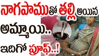 A Real Story Of Snake and Indian Women In Karna...