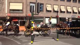 Sveriges Nationaldag 2013