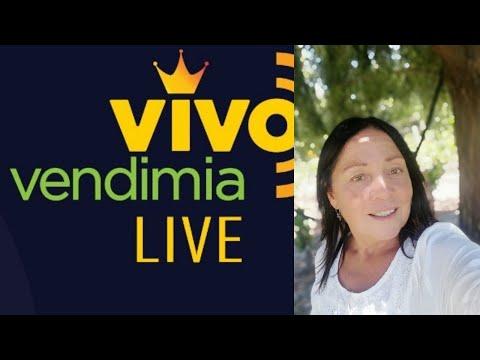 Alejandra Gamboa en nuestro espacio de Instagram TV