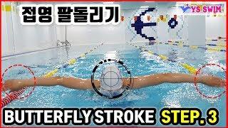수영) 접영 팔동작 연습하기 3편 : 양팔 접영 시작해 보기