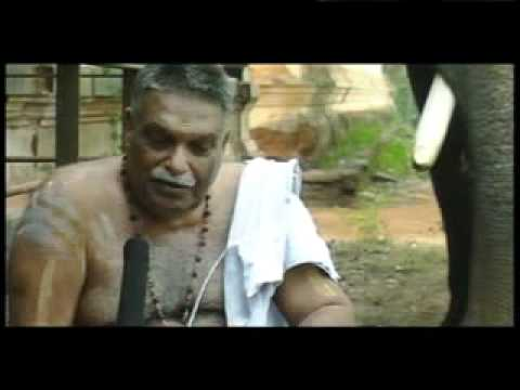 Elephant Attack In Kerala 2012 Hasthyayurveda :Poomul...