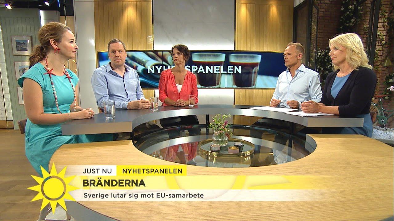 """Nyhetspanelen:""""Vi tar inte det klimatansvaret som vi borde göra för kommande ge - Nyhetsmorgon (TV4)"""