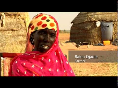 Niger, Africa -  Drought and Food Crisis