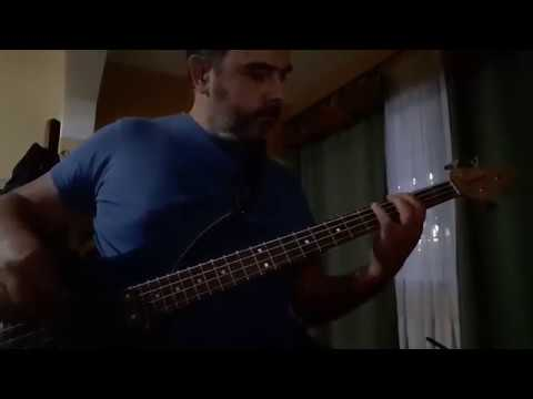 Red Hot Chili Peppers - Soul to squeeze (bass cover)