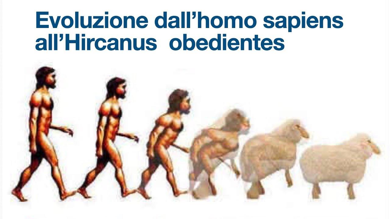 La vera storia dell'evoluzione fino all'homo sapiens ed oltre…