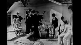 The Association on Where the Action is Cherish 1966 w/interviews