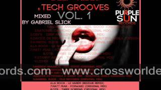 Deep Vibes & Tech Grooves VOL. 1 Mixed by Gabriel Slick OUT NOW