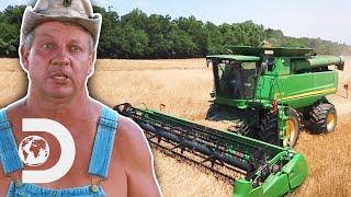 Tim Gets Free Barley To Make Single Malt Moonshine As Long As He Harvests It Himself | Moonshiners