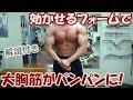【筋トレ】フライ3種目で大胸筋が強烈にパンプした胸のトレーニング【解説付き】