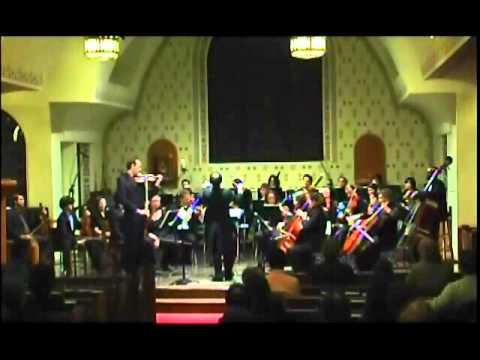 Goldmark Violin Concerto, Op. 28 - 1st mvt. Allegro moderato, Part 1