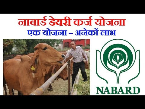 NABARD Dairy Subsidy Scheme by GOI (नाबार्ड डेयरी कर्ज योजना) | For Farmers & Entrepreneurs