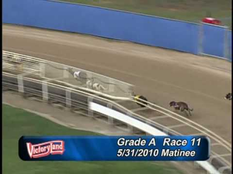 Victoryland 5/31/10 Matinee Race 11