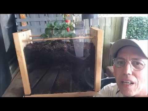 Living Soil, Core Farming, Organic Soil