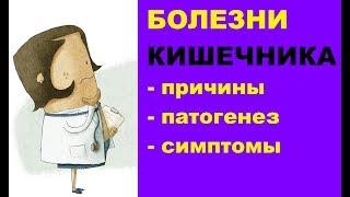 Болезни кишечника: причины, патогенез, симптомы