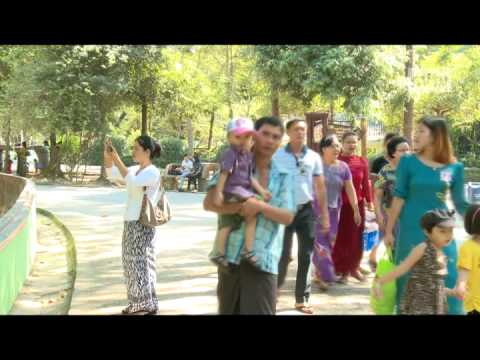 mitv - Yangon Zoo: Public Feeding To Animals Banned