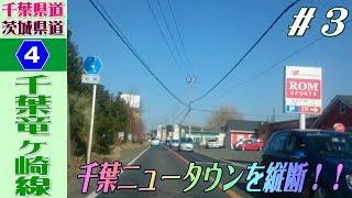 【完全走破してやるぞ】千葉県道茨城県道4号千葉竜ヶ崎線・再々走行 その3
