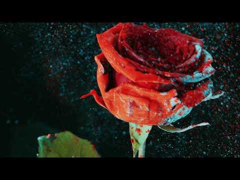 Martin Garrix & David Guetta - So Far Away (feat. Jamie Scott & Romy Dya) (CMC$ Remix)