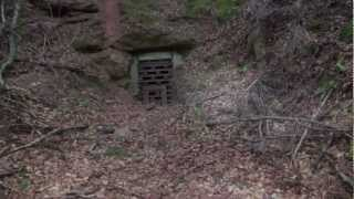 Dahner Felsenland Vergessenes des WK II Spaziergang Teil 3 carly4711 Info Clip auf Youtube