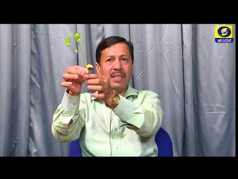 Science_Green Plants and Chordates_Part 2_SSLC